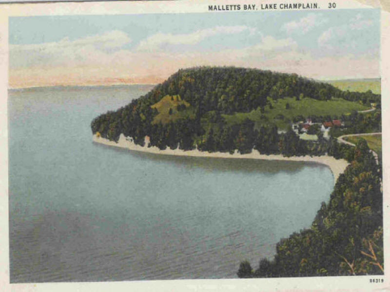 Malletts Bay with trees on hillside