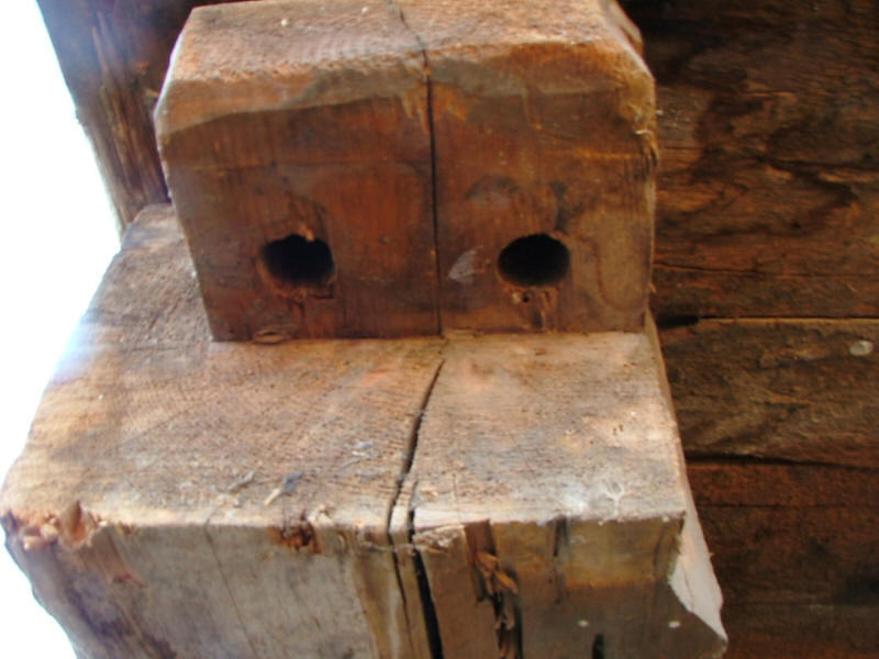 Tenon with holes for treenails