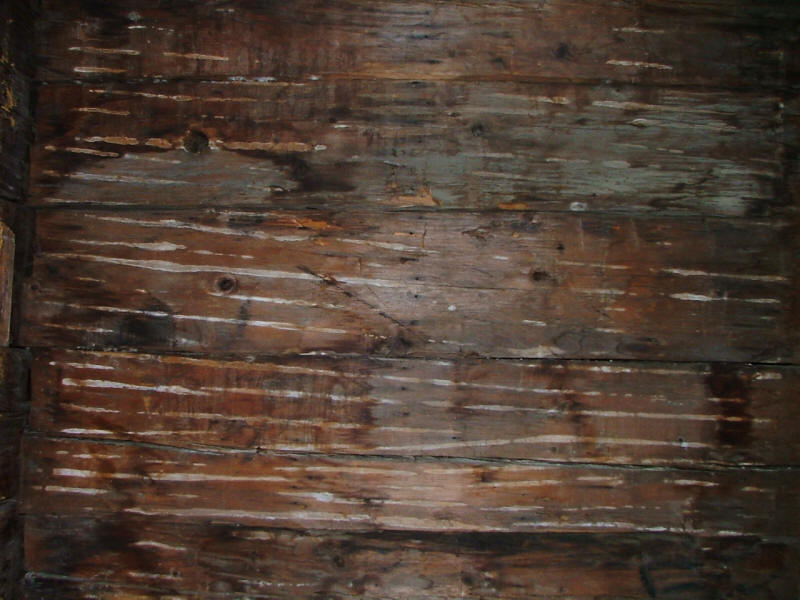 lath evidence for plaster repair