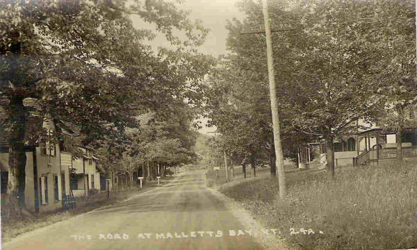 Road at Mallett Bay